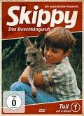 Skippy - Das Buschkänguruh - Staffel 1
