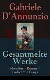 Gesammelte Werke: Novellen + Roman + Gedichte + Essays (eBook, ePUB)