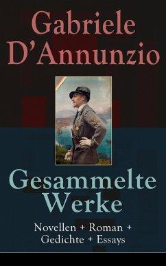 Gesammelte Werke: Novellen + Roman + Gedichte +...