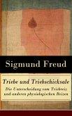 Triebe und Triebschicksale - Die Unterscheidung vom Triebreiz und anderen physiologischen Reizen (eBook, ePUB)