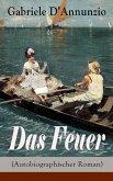 Das Feuer (Autobiographischer Roman) (eBook, ePUB)