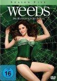 Weeds - Kleine Deals unter Nachbarn, Season Five (3 Discs)