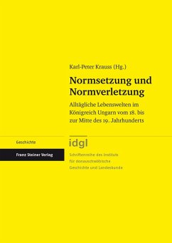 Normsetzung und Normverletzung (eBook, PDF)