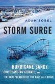 Storm Surge (eBook, ePUB)