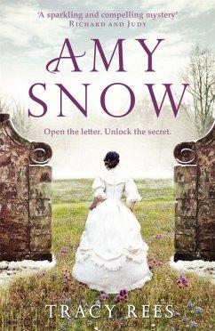 Amy Snow (eBook, ePUB)