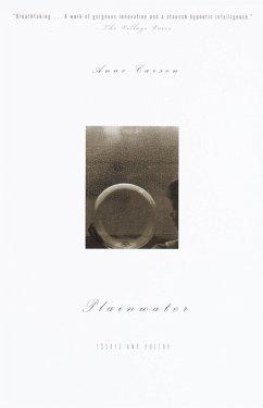 Plainwater (eBook, ePUB) - Carson, Anne