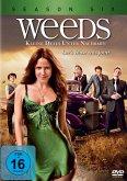 Weeds - Kleine Deals unter Nachbarn, Season Six (3 Discs)