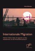 Internationale Migration: Welchen Einfluss haben Immigranten auf den Arbeitsmarkt und das Wirtschaftswachstum? (eBook, PDF)