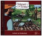 Aufruhr im Gemüsebeet / Pettersson & Findus Bd.3 (1 Audio-CD)