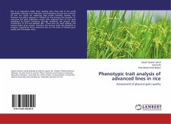 Phenotypic trait analysis of advanced lines in rice
