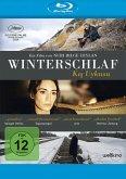Winterschlaf - Kis Uykusu