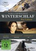 Winterschlaf - Kis uykusu (2 Discs)