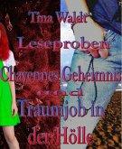 Chayennes Geheimnis/Traumjob in der Hölle (eBook, ePUB)