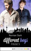CSD und andere Katastrophen / different boys Bd.5 (eBook, ePUB)