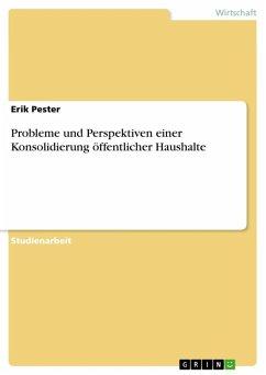 Probleme und Perspektiven einer Konsolidierung öffentlicher Haushalte (eBook, ePUB)