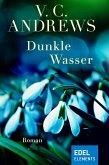 Dunkle Wasser (eBook, ePUB)