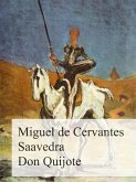 Don Quijote (eBook, ePUB)