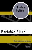 Perfekte Pläne (eBook, ePUB)