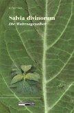 Salvia Divinorum - Die Wahrsagesalbei (eBook, ePUB)