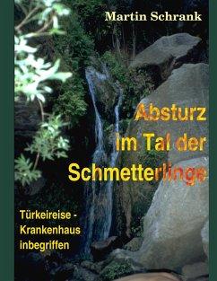 Absturz im Tal der Schmetterlinge (eBook, ePUB)