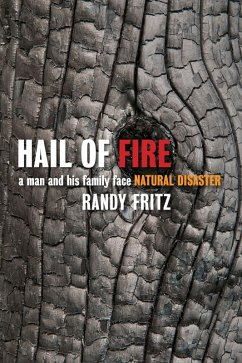 Hail of Fire (eBook, ePUB) - Fritz, Randy