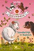 Schmetterlinge im Ponybauch / Die Haferhorde Bd.4