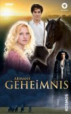 Armans Geheimnis (eBook, ePUB)