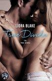 True Divide (eBook, ePUB)