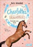 Erste Liebe, erstes Turnier / Charlottes Traumpferd Bd.4 (eBook, ePUB)