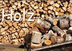 Holz (Wandkalender 2016 DIN A2 quer)