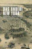 Das andere New York (eBook, PDF)