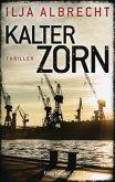 Kalter Zorn / Kiran Mendelsohn Bd.2