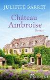 Château Ambroise (eBook, ePUB)
