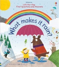 Lift-the-Flap First Questions and Answers What Makes it Rain? - Daynes, Katie