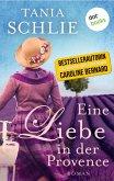 Eine Liebe in der Provence (eBook, ePUB)