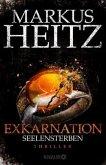 Seelensterben / Exkarnation Bd.2 (Restexemplar)