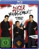 Anger Management - Die komplette 4. Staffel (2 Discs)