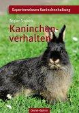 Kaninchenverhalten