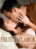 FRUITS OF LABOR (eBook, ePUB)