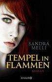 Tempel in Flammen / Dämmerlande Bd.5 (eBook, ePUB)