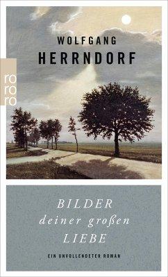 Bilder deiner großen Liebe - Herrndorf, Wolfgang