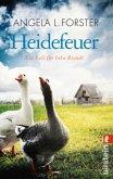 Heidefeuer / Inka Brandt Bd.1