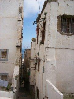 Algerien - ein Land holt auf! - Kinzelbach, Donata