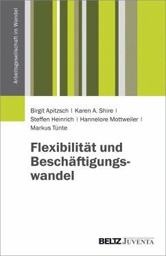 Flexibilität und Beschäftigungswandel (eBook, PDF) - Apitzsch, Birgit; Shire, Karen A.; Heinrich, Steffen; Mottweiler, Hannelore; Tünte, Markus