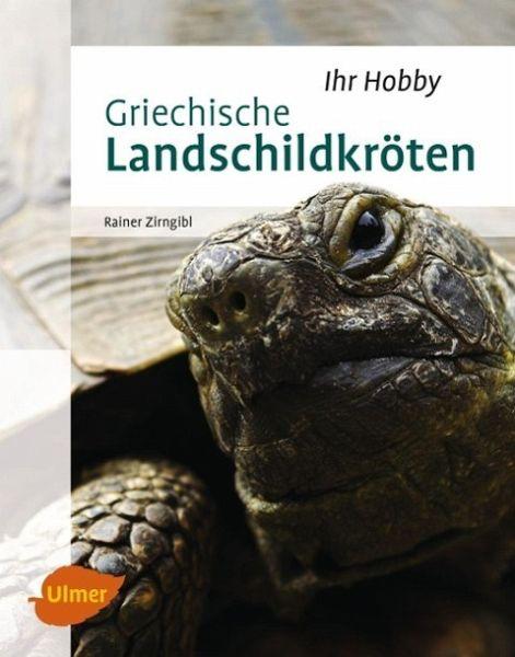 Griechische Landschildkröten - Zirngibl, Rainer