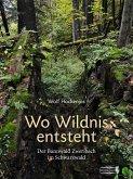 Wo Wildnis entsteht