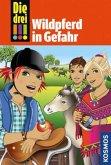 Wildpferd in Gefahr / Die drei Ausrufezeichen Bd.55