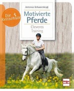Motivierte Pferde - Schwarzkopf, Antonia