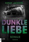 Du bist mein Licht / Dunkle Liebe Bd.1 (eBook, ePUB)