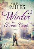 Winter in Briar Creek / Briar Creek Bd.1 (eBook, ePUB)